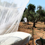 SIESTA OUTDOORS AMONG THE OLIVE TREES 3